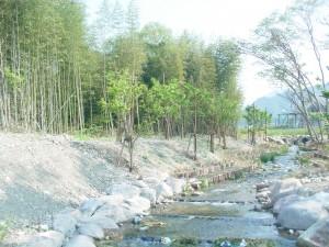 河川環境整備工事